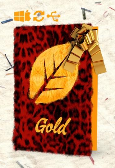"""Paket """"Upgrade-Gold"""""""